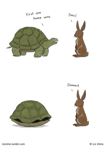 Turtle and the Hare
